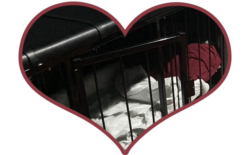 Sleeping in a Cage